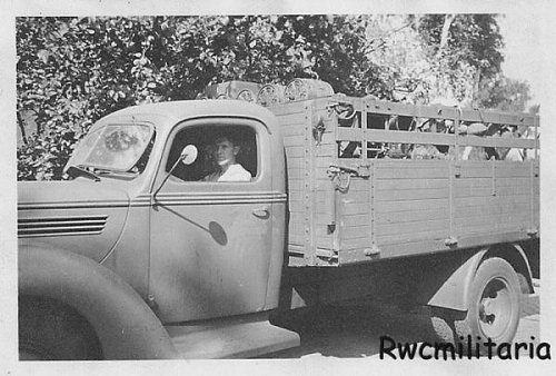 Significant number of 1938 ford truck in luftwaffe with for Beds r us gympie